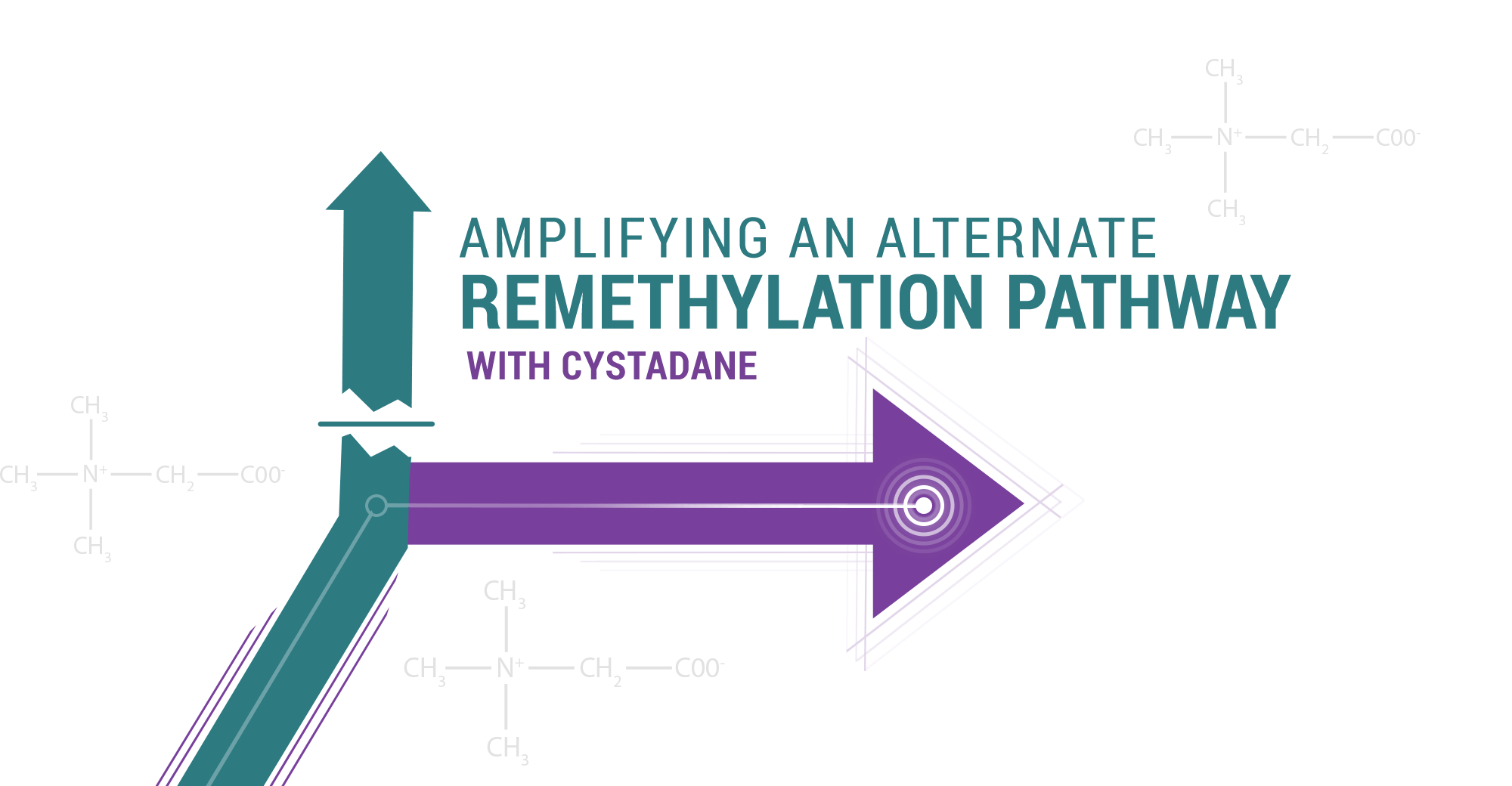 Image of arrows and chemical compositions representing the creation of an alternate remethylation pathway with CYSTADANE